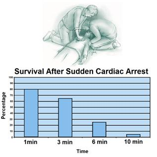 Figure 2: Probability of survival as a function of time following cardiac arrest. [8]